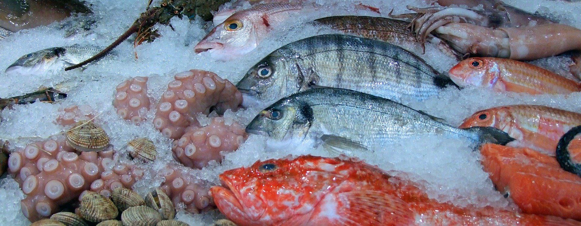 Regolamentazioni antifrode per i prodotti ittici